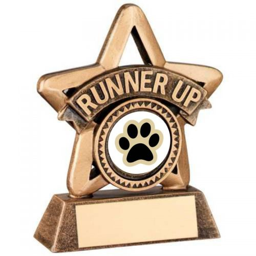 Bronze and Gold Runner Up Dog Star Trophy