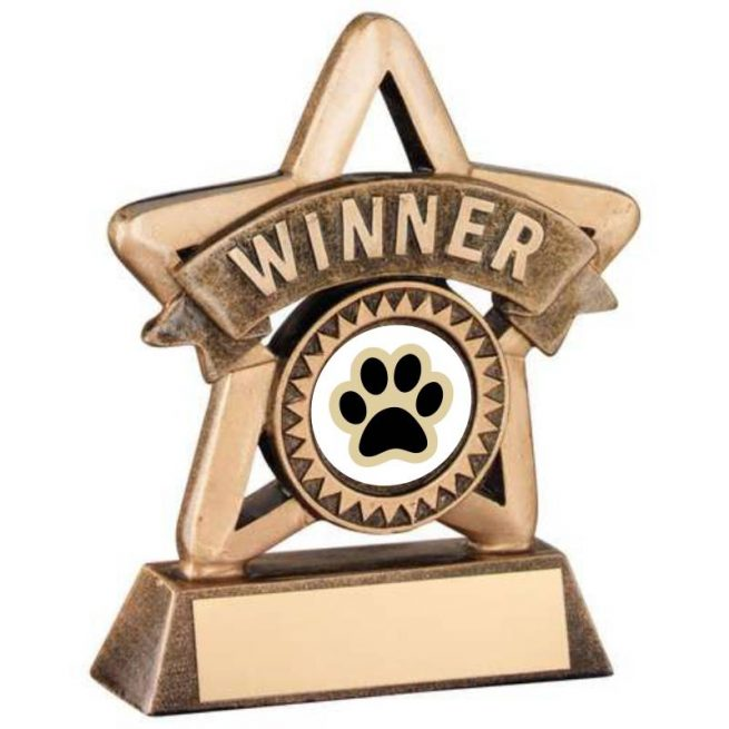 Bronze and Gold Winner Dog Star Trophy